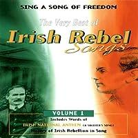 The Very Best of Irish Rebel