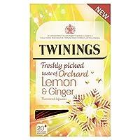 (Twinings (トワイニング)) パックごとの新鮮な味のレモン&ジンジャー20 (x6) - Twinings Fresh Tasting Lemon & Ginger 20 per pack (Pack of 6) [並行輸入品]