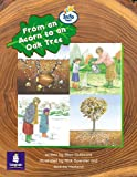 From an acorn to an oak tree Info Trail Emergent stage Non-fiction Book 23 (LITERACY LAND)