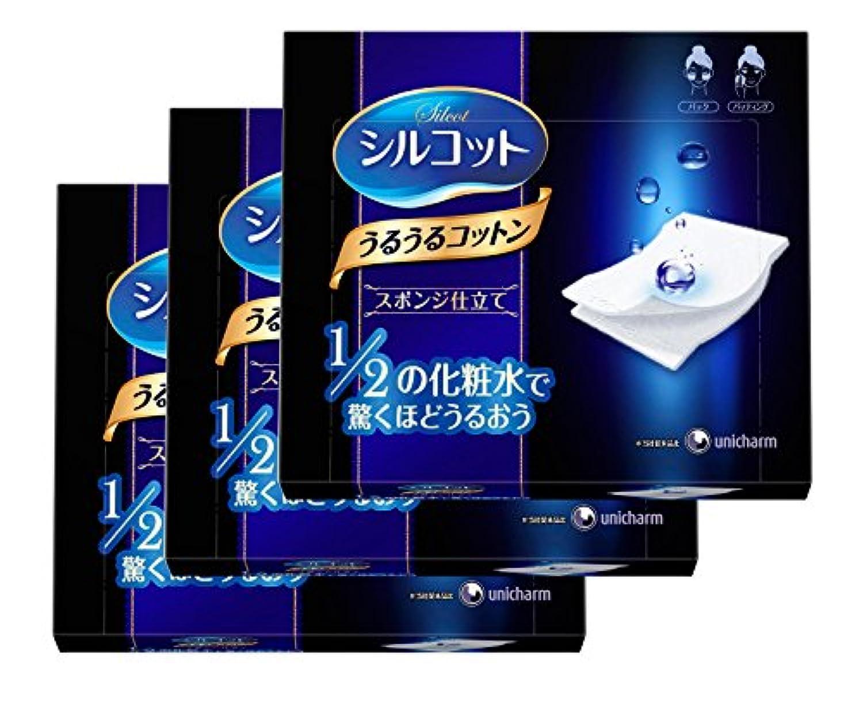 海白雪姫感情のシルコット うるうるコットン スポンジ仕立て 40枚入×3個