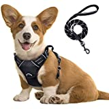rabbitgoo No-Pull Dog Harness Leash Set Heavy Duty Halter Harness with Leash for Large Dogs Reflective Adjustable Pet Vest Ha