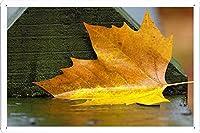 黄色の葉ダウンのティンサイン 金属看板 ポスター / Tin Sign Metal Poster of Yellow Leaf Down