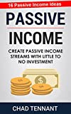 Passive Income: Create Passive Income Streams with Little to No Investment (16 Passive Income Ideas Inside!) (English Edition)