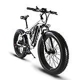 Cyrusher XF800 ファットバイク 電動アシスト自転車 17×26インチ マウンテンバイク1000W 48V13An アルミフレーム FATBIKE迫力の極太タイヤ スノーホイール (ブラック)