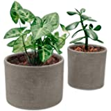 Elly Décor Set of 2 Ceramic Planters for Plants Succulents with Drainage Hole for Indoors and Outdoors Pot, Gray Cement
