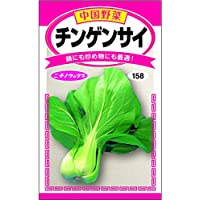 <チンゲンサイ> 作り易い中国野菜の定番種!