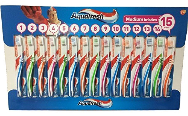 バランスアレキサンダーグラハムベル動員するアクアフレッシュ Aquafresh ハブラシ 15本