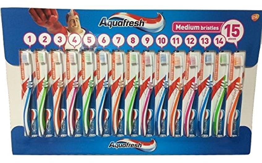 クリケットやりがいのあるドライアクアフレッシュ Aquafresh ハブラシ 15本