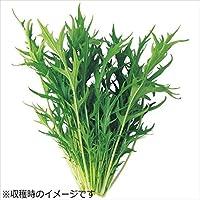 ユーイング 水耕栽培器 Green Farm グリーンファーム 水耕栽培種子 水菜 5袋セット UH-LB02-5SET