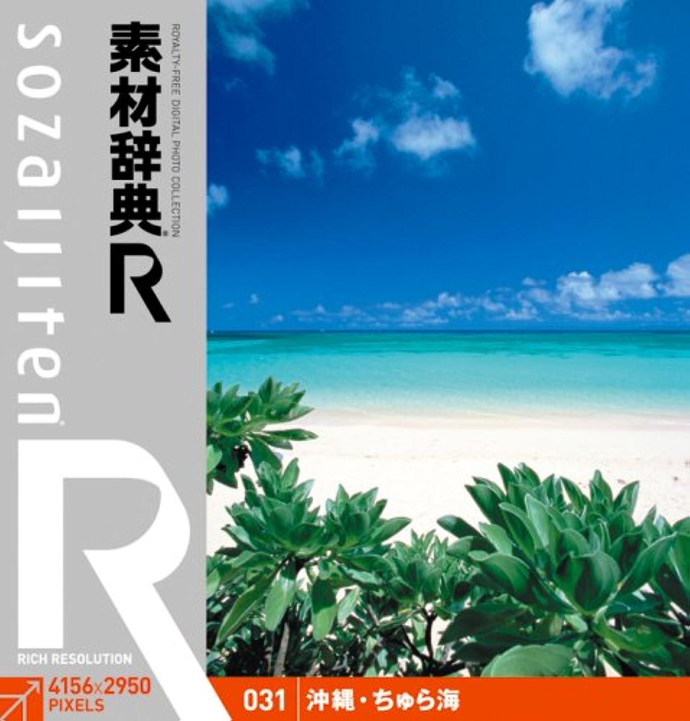 飾り羽幻想的店主素材辞典[R(アール)] 031 沖縄?ちゅら海