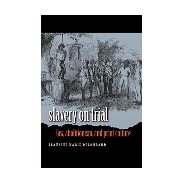 Slavery on Trial: Law, A...の商品画像