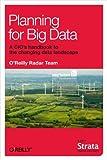 Planning for Big Data (English Edition)
