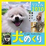 犬めくり 2020年 カレンダー リフィル 日めくり CK-D20-02