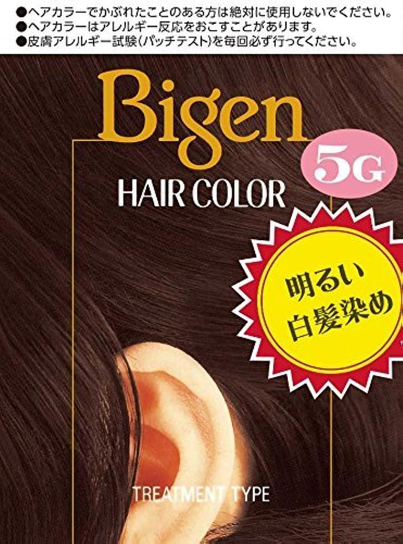合併ナイロン実験的ホーユー ビゲン ヘアカラー 5G (深い栗色) 40mL+40mL ×6個