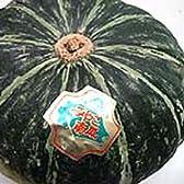 ミヤコカボチャ 1個1.5kg前後7個
