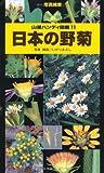 日本の野菊 (山溪ハンディ図鑑)