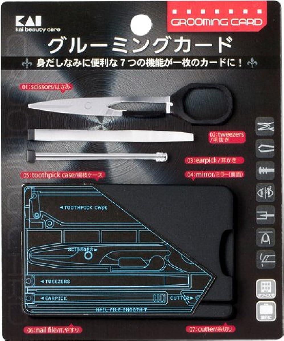 かんがいネコ視力グルーミングカード(ハサミ付)(男性用)