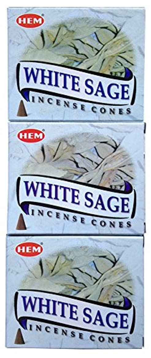 コンクリート定期的に溶けるHEM ホワイトセージ コーン 3個セット