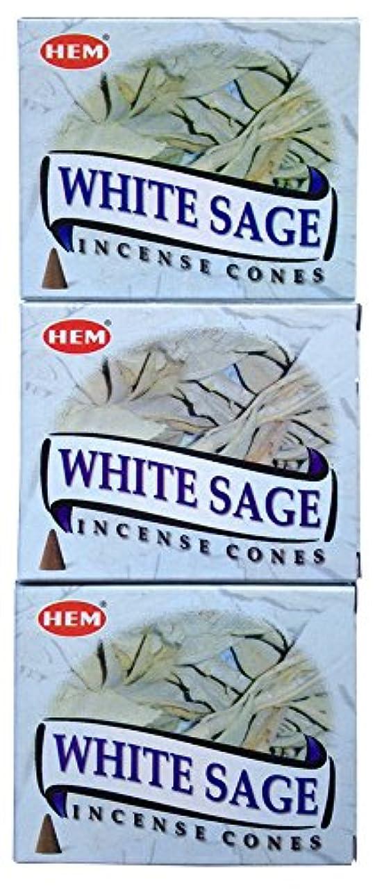 強大な羊の服を着た狼に対処するHEM ホワイトセージ コーン 3個セット