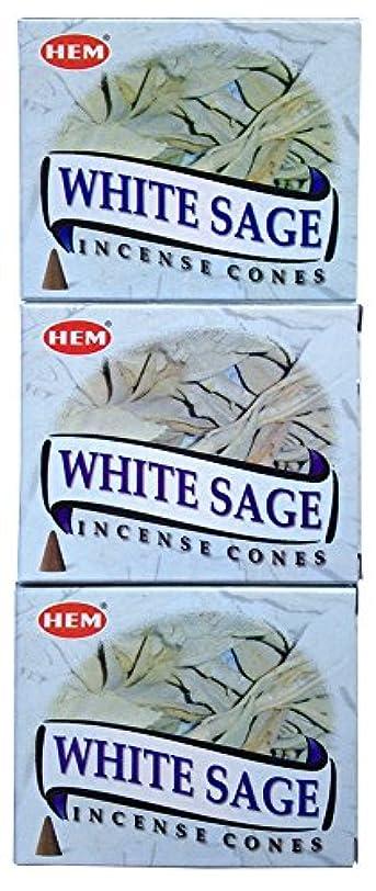 サロンかなりのバレルHEM ホワイトセージ コーン 3個セット