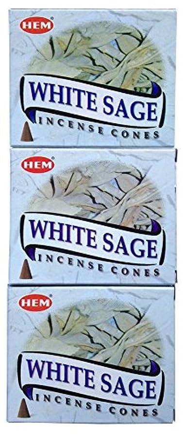 持続的酸っぱいラジカルHEM ホワイトセージ コーン 3個セット