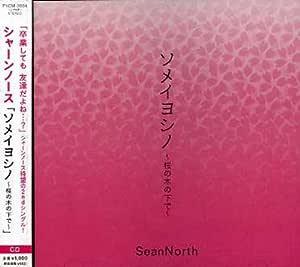 ソメイヨシノ~桜の木の下で~