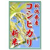 【新米28年産】田辺さん家の有機質肥料100%・低減農薬 新潟県産コシヒカリ100%玄米 10kg くっつかないしゃもじ付