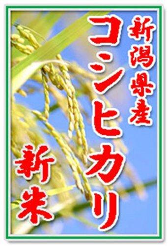 【新米29年産】田辺さん家の有機質肥料100%・低減農薬 新...