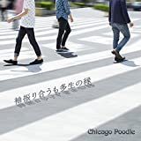 平安の都 京都(Chicago Poodle ver.) / Chicago Poodle
