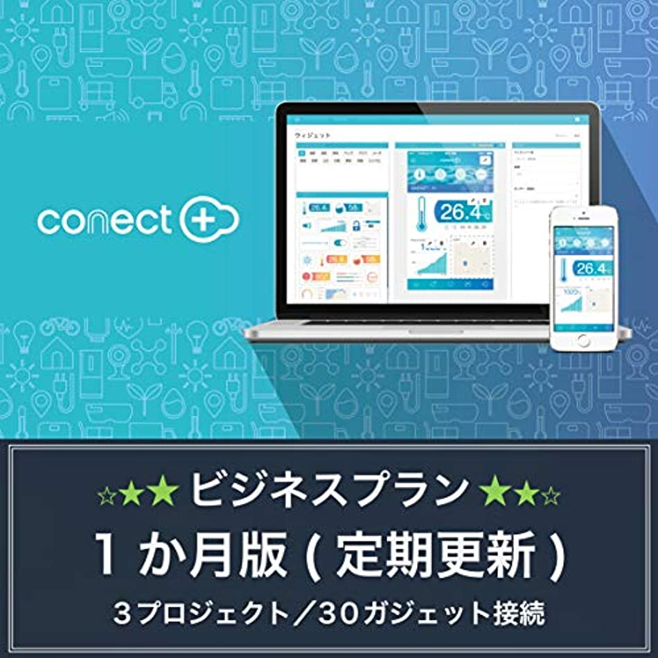 conect+ BUSINESS PLAN | 1ヶ月プラン | 3プロジェクト/30ガジェット接続 | サブスクリプション(定期更新)