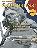 The Supermarine Spitfire Mk. V: The Eagle Squadrons