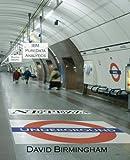 Netezza Underground: An IBM Puredata Adventure