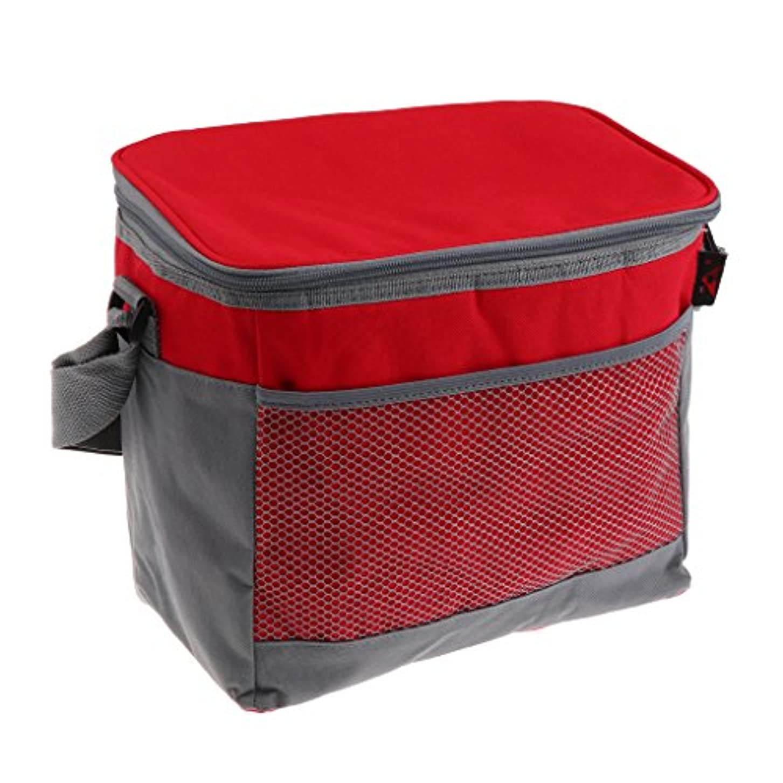 管理ピケ批判的にPerfk 断熱 ランチボックス クーラーバッグ 調節可能 ストラップ付き ピクニック用 全3色