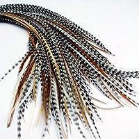 リアルフェザー羽ヘアーエクステンション 25本セット 18-23cm +リングループ (Mixed Naturals)