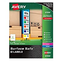 Avery Durable Labels Label 2 x 10 (61506?) [並行輸入品]