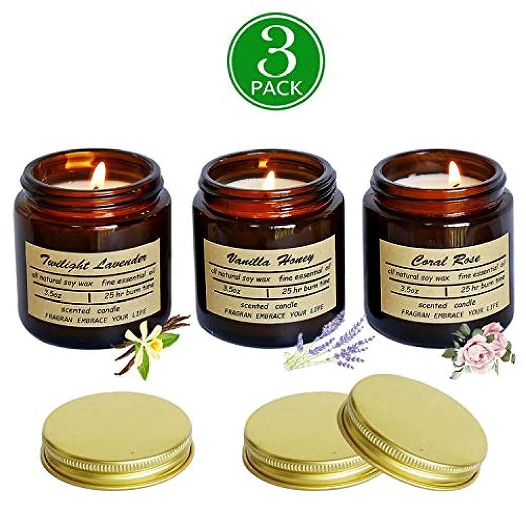 電気のプレゼントキャラバン処置 医学香りのキャンドル3PCSレトロガラスびん