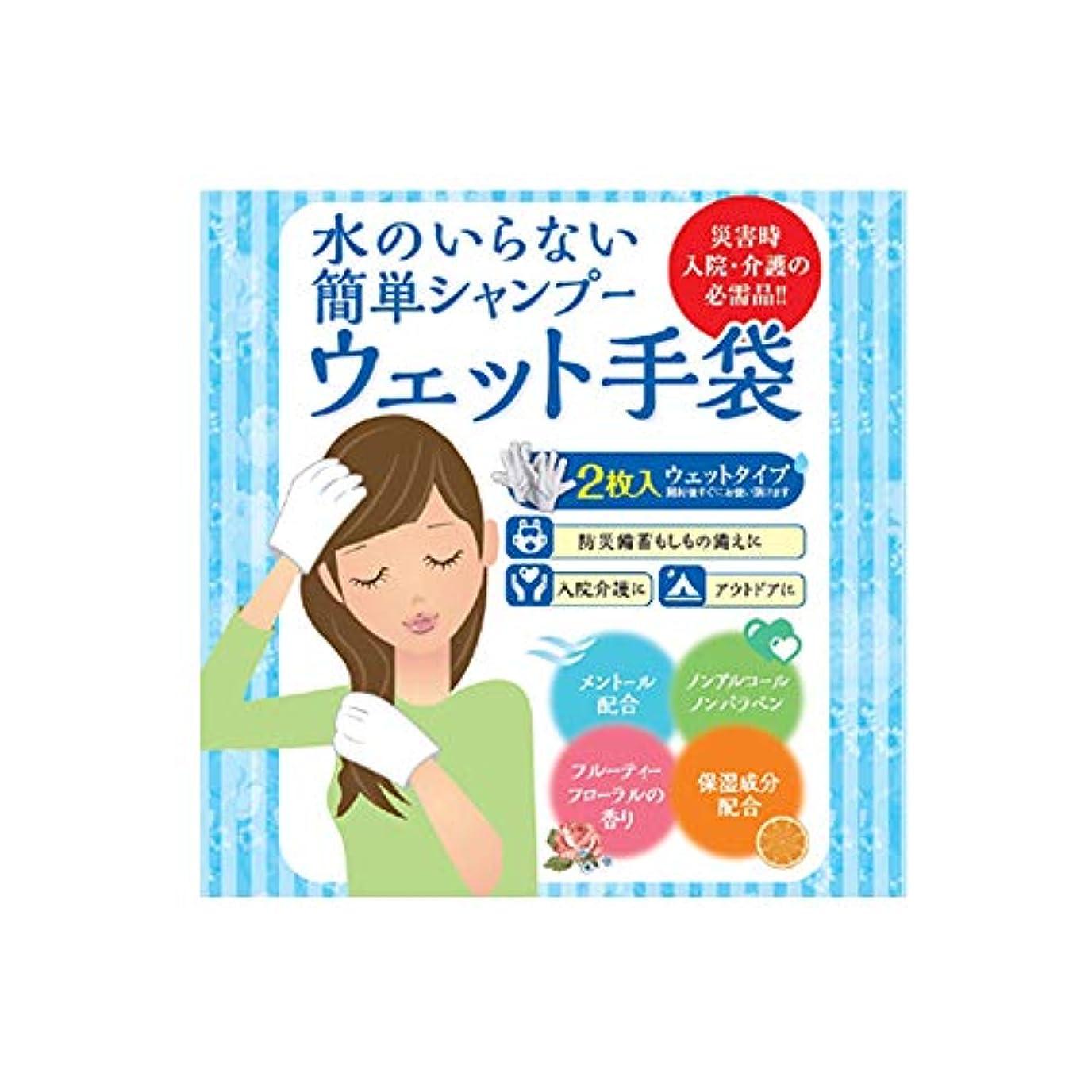 メインドラッグ行商人四国紙販売株式会社 水のいらない泡なしシャンプー ウェット手袋(2枚入) フルーティーフローラル