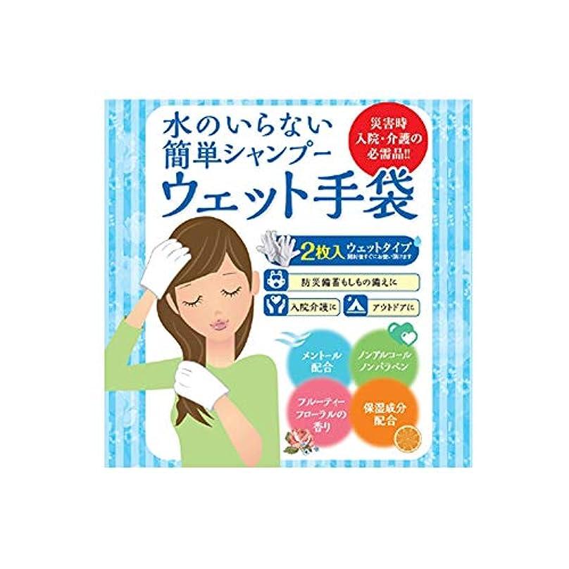 人類除外するアルバニー水のいらない泡なしシャンプー ウェット手袋(2枚入)