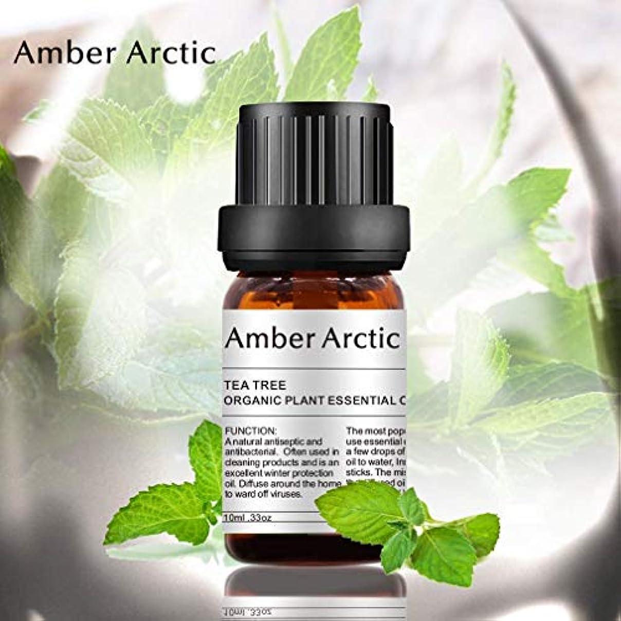 内陸多様なそしてAMBER ARCTIC 100% ピュア ペパーミント エッセンシャル オイル ディフューザー 用 10ml/0.33oz フレッシュ オーガニック ナチュラル ペパーミント オイル
