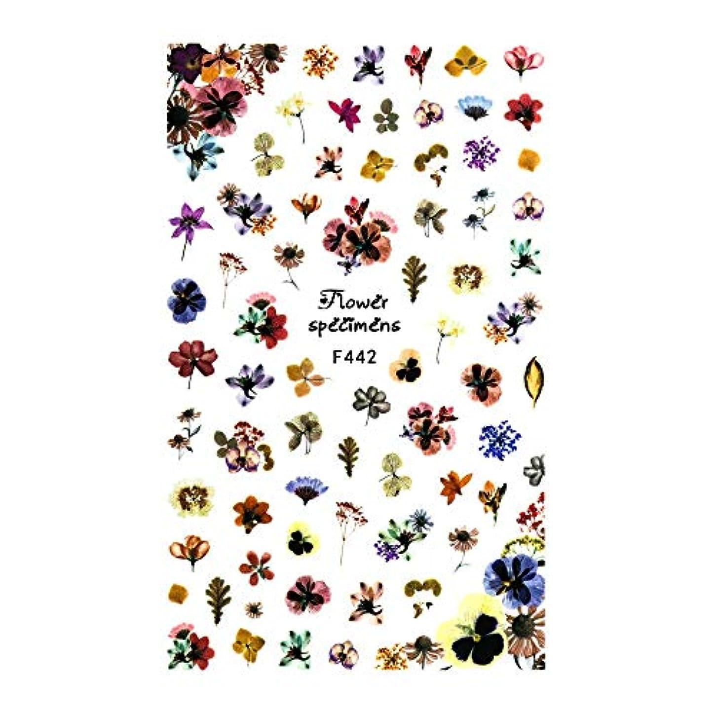 うれしい尊厳地質学irogel イロジェル ネイルシール アンティークドライフラワーシール【F442】花 フラワー ドライフラワー