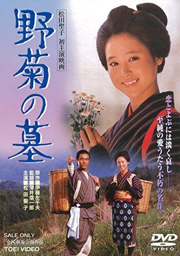 野菊の墓のイメージ画像