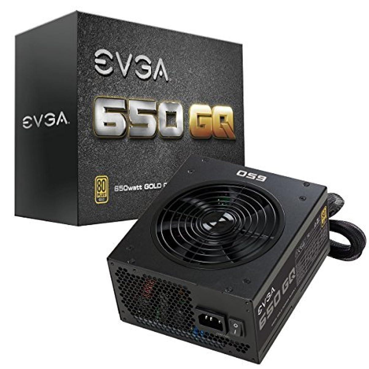 ペア胸挨拶EVGA 650 GQ, 80+ GOLD 650W, Semi Modular, EVGA ECO Mode, 5 Year Warranty, Power Supply 210-GQ-0650-V1 [並行輸入品]