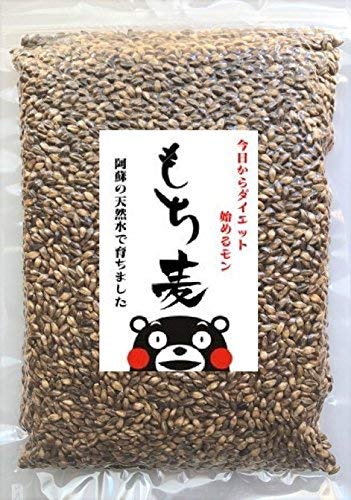 【Amazon.co.jp限定】 熊本産 もち麦 食物繊維 ゴボウの2倍 ダイエット 無農薬 ダイシモチ 真空パック 便利チャック付 500g