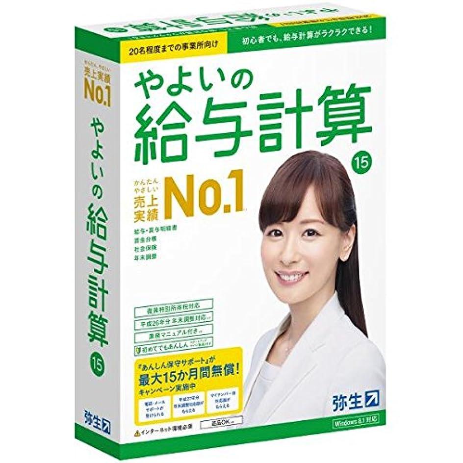 アレルギー性馬鹿げたダイヤル【旧商品】やよいの給与計算 15