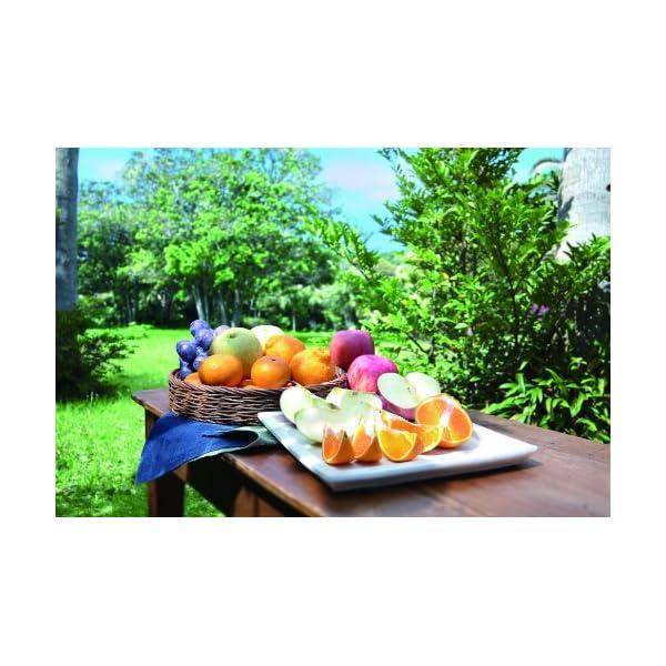 カゴメ国産フルーツジュースギフト KT30Hの紹介画像3