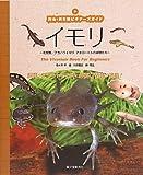 イモリ―有尾類/アカハライモリ・アホロートルの仲間たち (爬虫・両生類ビギナーズガイド)