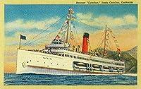 Steamer Catalina atサンタ・カタリナ島 16 x 24 Signed Art Print LANT-1925-709