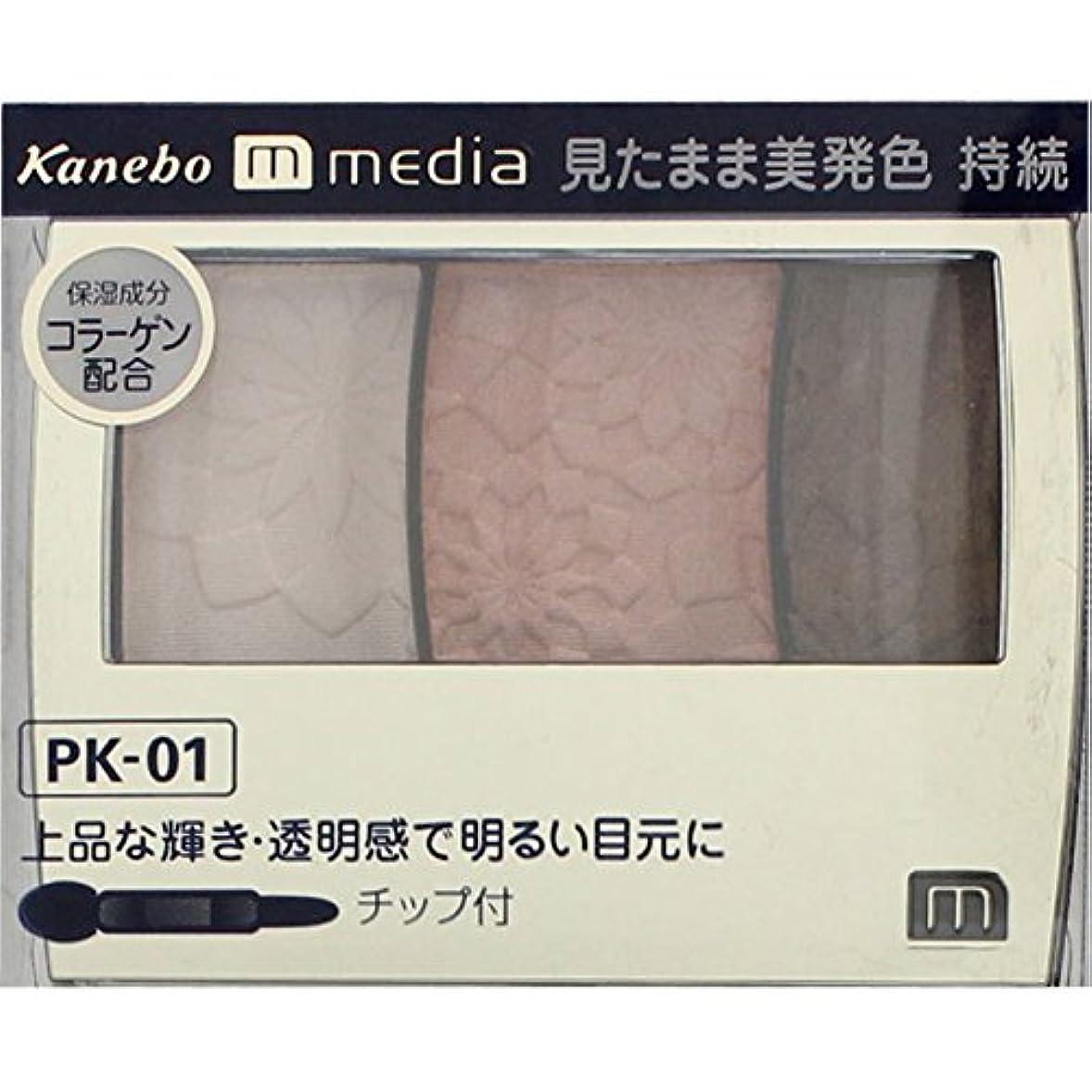 首どこにも蛾【カネボウ】 メディア グラデカラーアイシャドウ PK-01