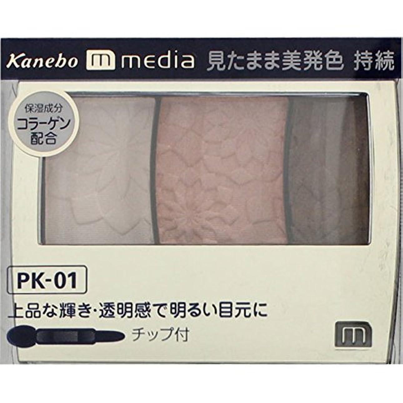 適格姓興奮する【カネボウ】 メディア グラデカラーアイシャドウ PK-01
