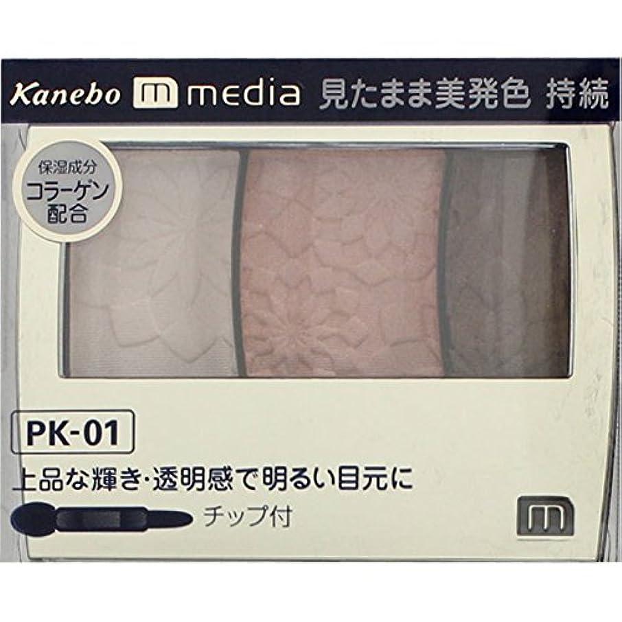 しないピラミッド文庫本【カネボウ】 メディア グラデカラーアイシャドウ PK-01